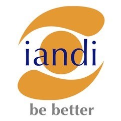 iandi business solutions ltd